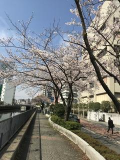 横浜駅イアス付近.JPG